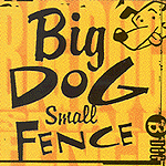 Big Dog Small Fence by Big Dog Small Fence