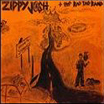 Stupidville by Zippy Josh And The Rag Tag Band